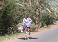 Wallpapers Trips : Africa Retours à la maison