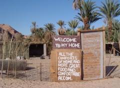 Wallpapers Trips : Africa oasis de Ain Hubra, Sinai Egypte