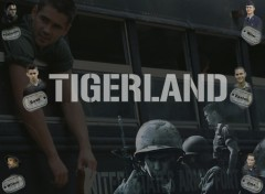 Wallpapers Movies Tigerland