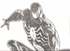 Fonds d'écran Art - Crayon black spidey.