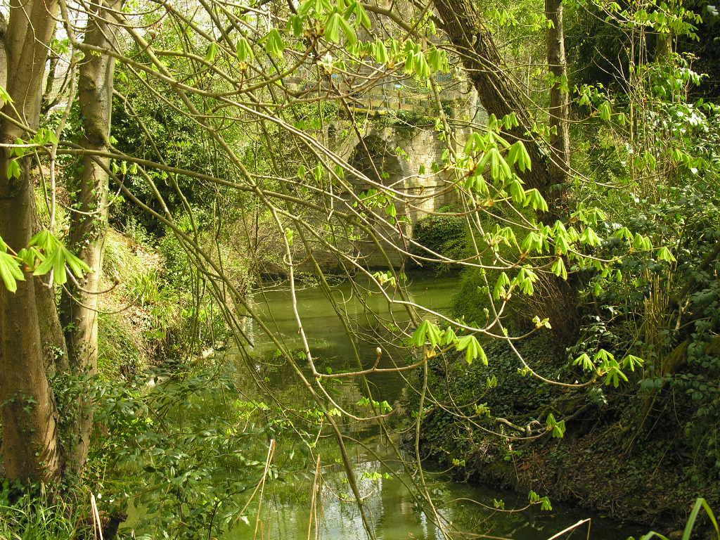 Fonds d'écran Nature Fleuves - Rivières - Torrents
