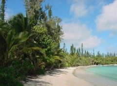 Wallpapers Trips : Oceania Ile des Pins, baie de Kanumera