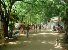 Fonds d'écran Voyages : Amérique du nord Sosua (République Dominicaine)