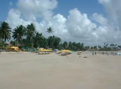 Fonds d'écran Voyages : Amérique du sud Porto de Galinhas