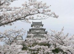 Wallpapers Trips : Asia Chateau d'Himeji