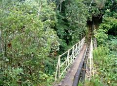 Fonds d'écran Voyages : Afrique Ile de la Réunion