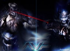 Fonds d'écran Cinéma alien versus predator