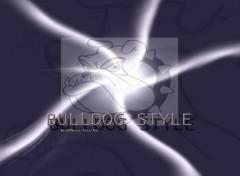 Fonds d'écran Art - Numérique bulldog screen