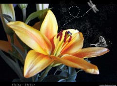 Wallpapers Digital Art Fleur volante