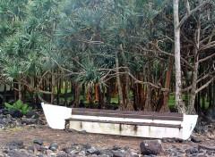 Fonds d'écran Voyages : Afrique Ile de la Réunion : Une barque ? (2/2)