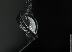Fonds d'écran Fantasy et Science Fiction Noeud de bulle