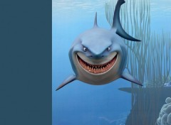 Fonds d'écran Dessins Animés Bruce le requin