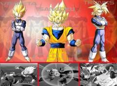 Fonds d'écran Manga Les super guerriers  VS    Cell