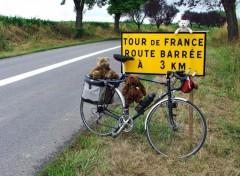 Fonds d'écran Sports - Loisirs 7ème Etape Tour de France Lunéville-Karlsruhe (1/2)