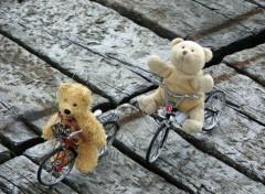 Fonds d'écran Objets Les Ours à vélo...