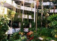 Fonds d'écran Voyages : Afrique Hall de l'hotel