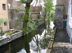 Fonds d'écran Nature Bruges (Belgique)
