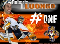 Wallpapers Sports - Leisures Roberto Luongo