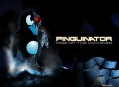 Fonds d'écran Informatique The Pinguinator | Rise of the machine