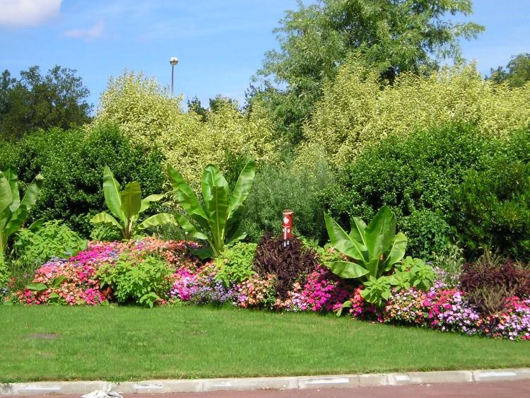 fonds d 39 cran nature fonds d 39 cran fleurs rond point fleuri par jojo54. Black Bedroom Furniture Sets. Home Design Ideas