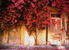 Wallpapers Trips : Europ tomar