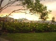 Fonds d'écran Voyages : Amérique du nord banlieu de québec