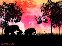 Wallpapers Digital Art The Elephant Walk