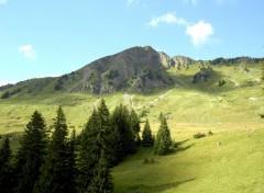 Fonds d'écran Voyages : Europe Alpage près du lac Retaud