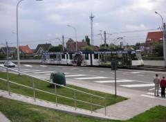 Wallpapers Various transports tram