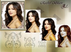 Wallpapers Celebrities Women Rachel Bilson- Summer