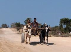 Fonds d'écran Voyages : Afrique Transport dans le sud