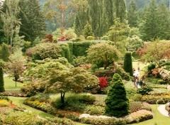 Fonds d'écran Nature jardin