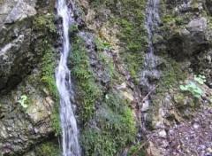 Fonds d'écran Nature petite cascade