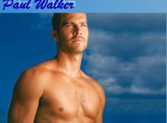 Fonds d'écran Célébrités Homme PAUL WALKER