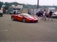 Fonds d'écran Voitures Ferrari Enzo