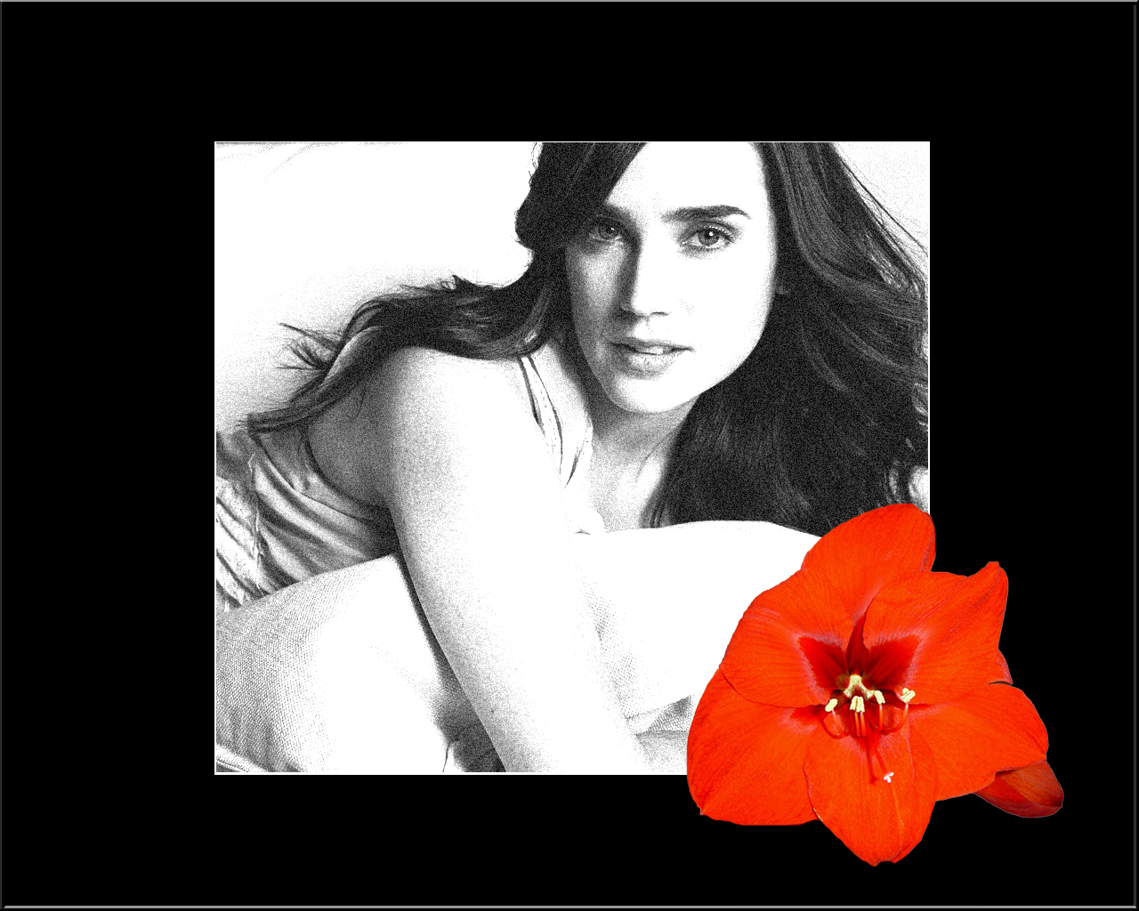 Fonds d'écran Célébrités Femme Jennifer Connelly Jennifer