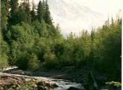 Fonds d'écran Nature rivière