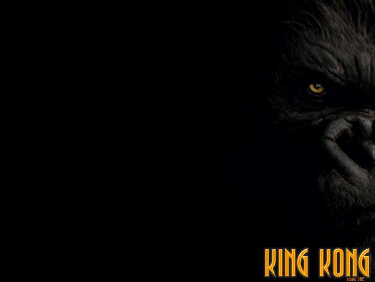 Fonds d'écran Cinéma King Kong Kong
