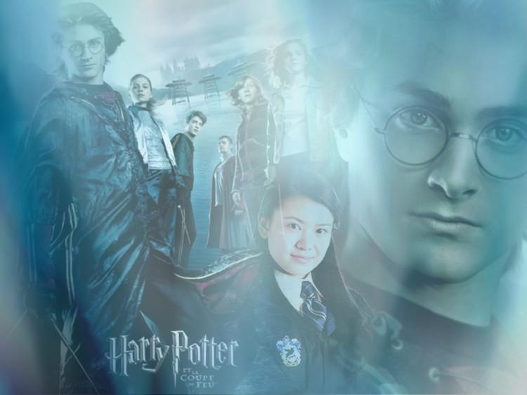 Fonds d'écran Cinéma Harry Potter et la Coupe de Feu (IV) Wallpaper N°124427