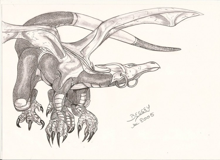 Fonds d'écran Art - Crayon Fantasy - Dragons dragon ailé