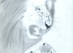 Wallpapers Art - Pencil Ira