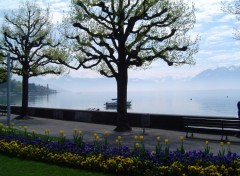 Fonds d'écran Voyages : Europe Lausanne-Ouchy, au bord du Lac Léman 2