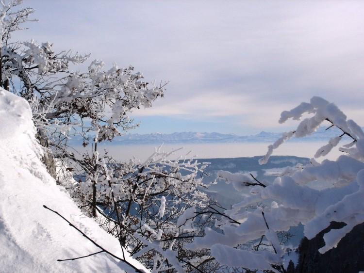 Fonds d'écran Nature Saisons - Hiver Wallpaper N°126103