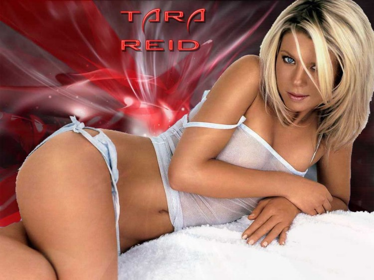 Fonds d'écran Célébrités Femme Tara Reid Wallpaper N°126553