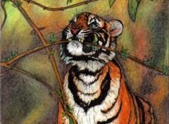 Fonds d'écran Art - Crayon Tigre
