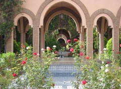 Fonds d'écran Voyages : Afrique Maroc - Jardin intérieur dans la palmeraie de Marrakech