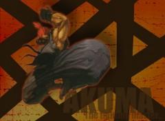 Wallpapers Video Games Akuma
