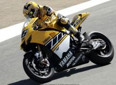 Fonds d'écran Motos Valentino Rossi - Laguna Seca MotoGP 2005