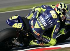 Fonds d'écran Motos Valentino Rossi - Turkey MotoGP 2005