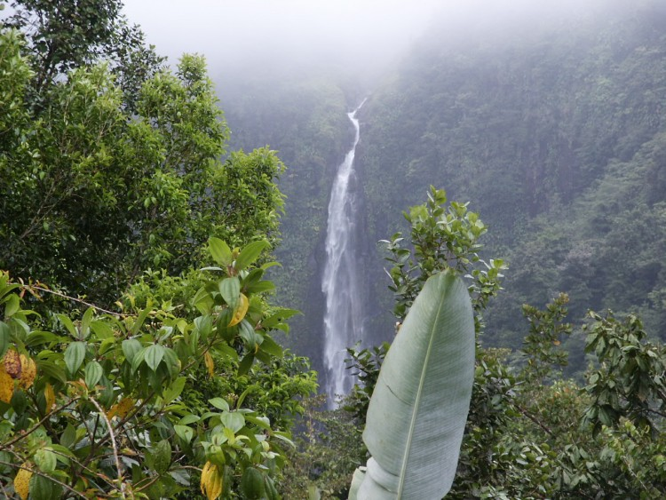 Wallpapers Nature Waterfalls Guadeloupe